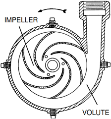 Centrifugal Pumps Casing and Impeller Designs | Intro to Pumps